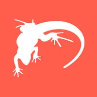 Lounge Lizard   Agency Vista