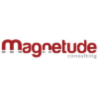 Magnetude Consulting | Agency Vista
