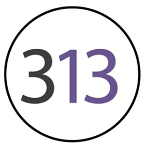 Marketing 313   Agency Vista
