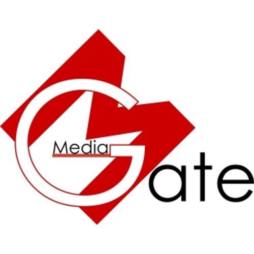 Media Gate Group | Agency Vista