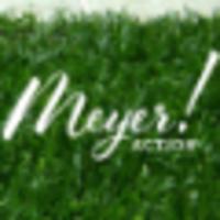 Meyer Action Marketing   Agency Vista