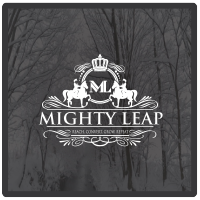 Mighty Leap | Agency Vista