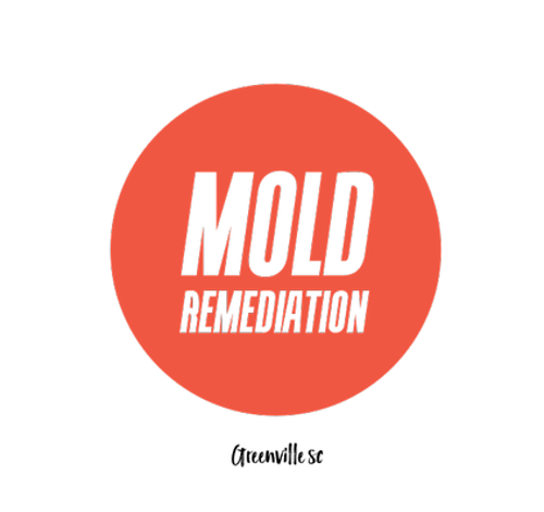 Mold Remediation, Testing and Removal Greenville  | Agency Vista