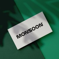 MONSOON - Online Marketi | Agency Vista