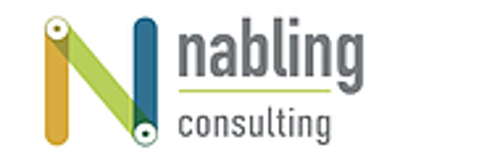 Nabling Consulting   Agency Vista