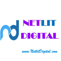 NETLIT DIGITAL | Agency Vista