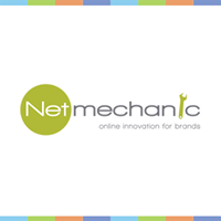 NetMechanic | Agency Vista