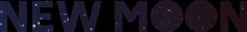 New Moon Freelance Agency   Agency Vista