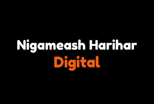 Nigameash Harihar Digital | Agency Vista