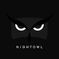 NightOwlSEO | Agency Vista
