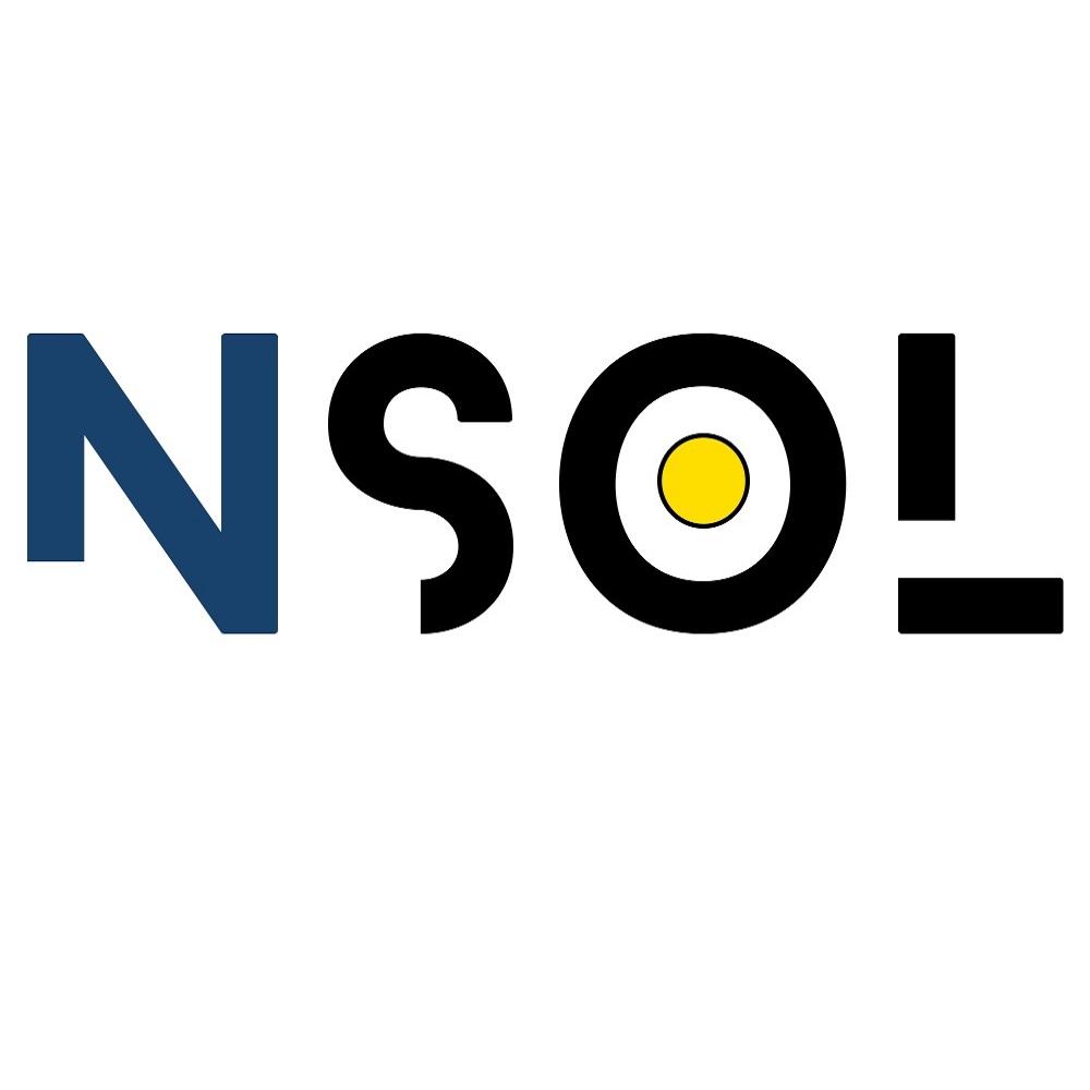 NSOL   Niku Solutions Pt   Agency Vista
