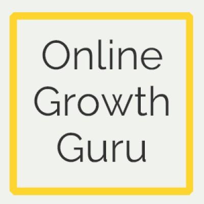 Online Growth Guru Marke | Agency Vista
