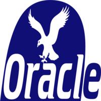 Oracle Marketer | Agency Vista