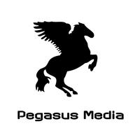Pegasus Media   Agency Vista