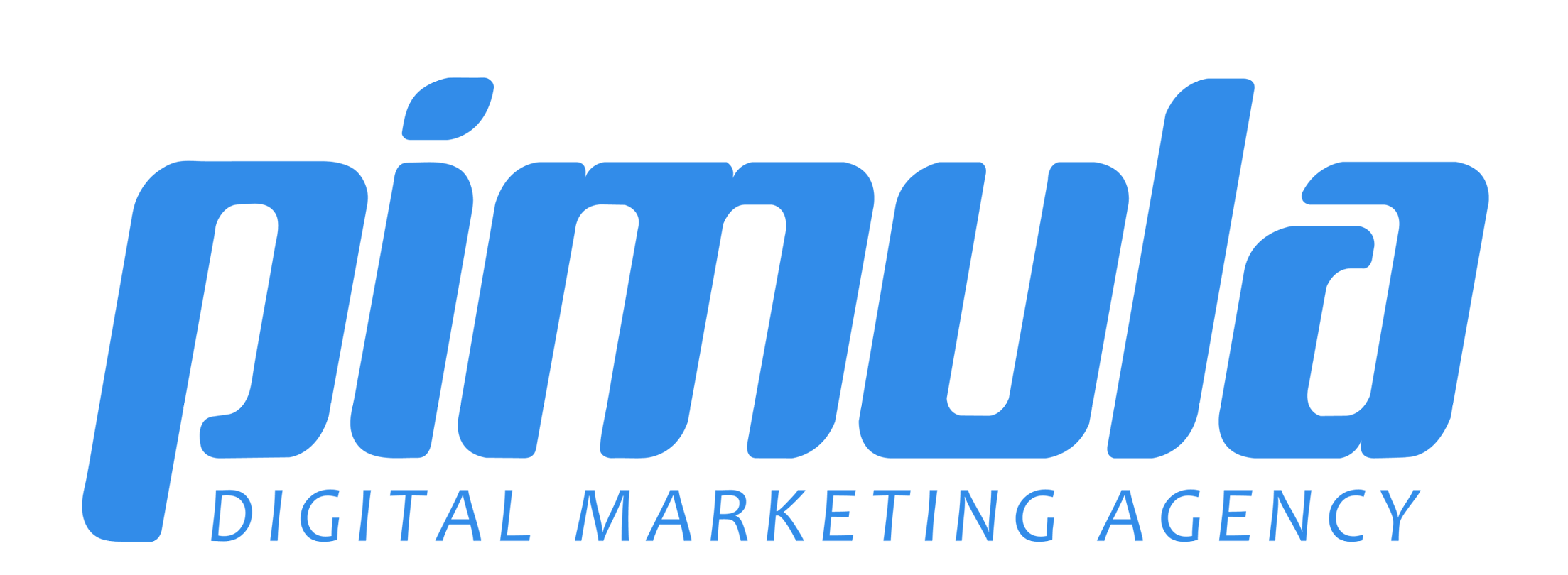 Pimula Agency | Agency Vista