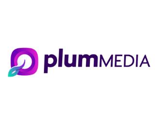 Plummedia | Agency Vista