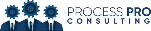 Process Pro Consulting   Agency Vista