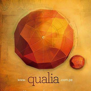 Qualia Publicidad   Agency Vista