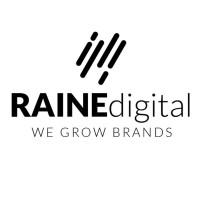 Raine Digital   Agency Vista