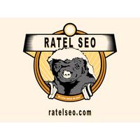 Ratel SEO   Agency Vista