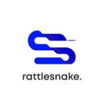 Rattlesnake Group | Agency Vista