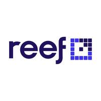 Reef Digital Agency | Agency Vista
