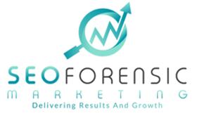 SEO Forensic Marketing   Agency Vista