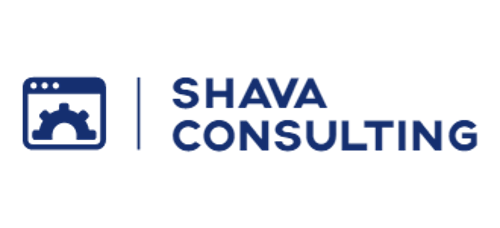 Shava Consulting | Agency Vista