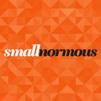 smallnormous LLC | Agency Vista