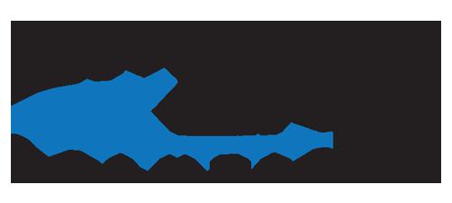 Smart Link Solutions   Agency Vista