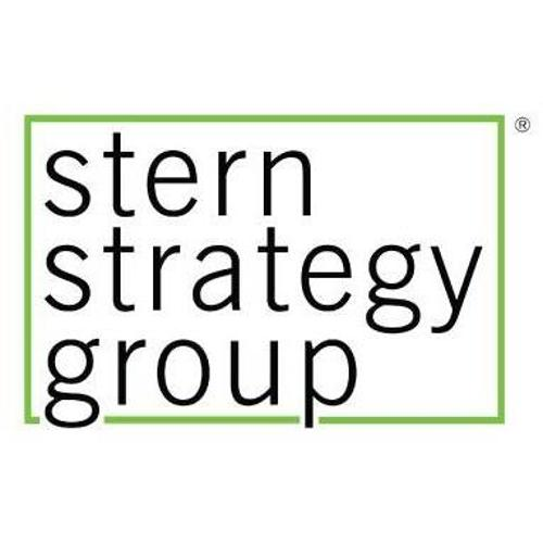 Stern Strategy Group | Agency Vista