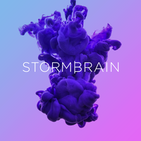 Storm Brain   Agency Vista