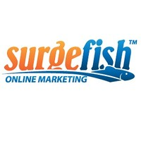 Surgefish Online Marketing | Agency Vista