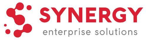 Synergy Enterprise Solutions   Agency Vista