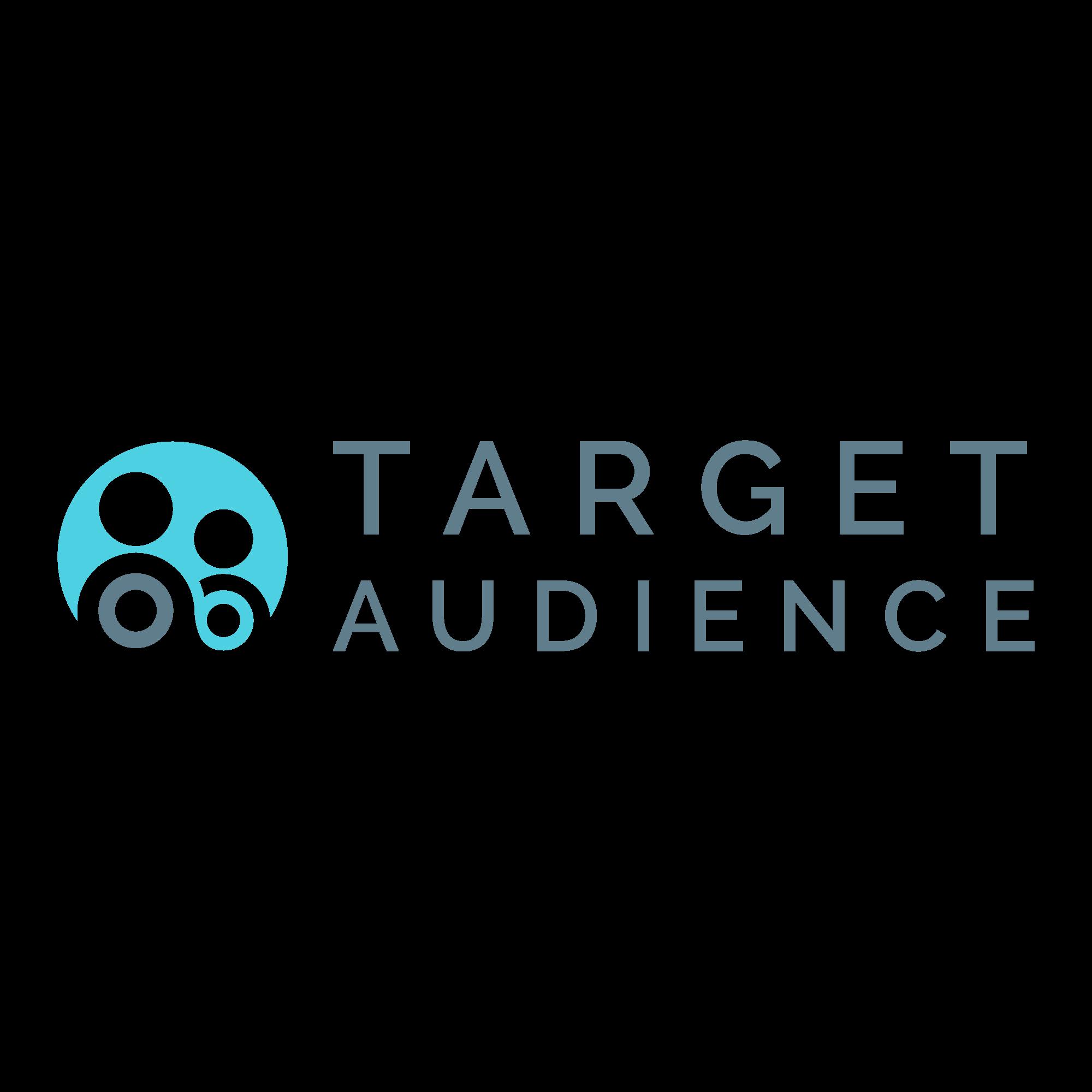 Target Audience   Agency Vista