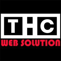 THC Web Solution | Agency Vista