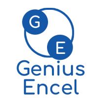 Genius Encel Agency | Agency Vista
