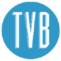 The Visual Brand (TVB) | Agency Vista
