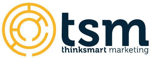 Thinksmart Marketing   Agency Vista