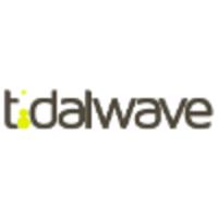 Tidalwave Marketing   Agency Vista