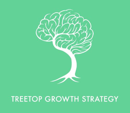 Treetop Growth Strategy | Agency Vista