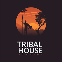 Tribal House Studios   Agency Vista
