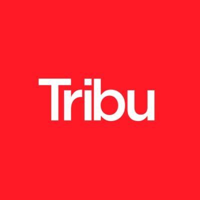 Tribu   Agency Vista