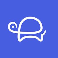 Turtle | Agency Vista