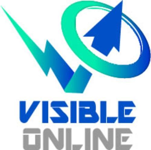 Visible Online - Google My Business Management Se | Agency Vista