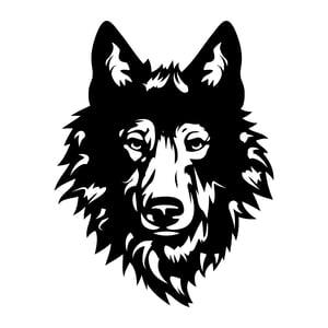 Wolfstreet   Agency Vista