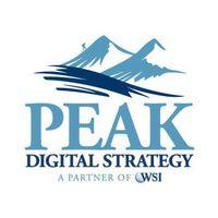 WSI Peak Digital Strategy | Agency Vista