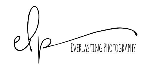 www.elphotographyinc.com   Agency Vista