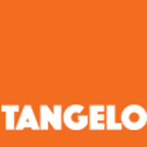 www.tangelo-media.com | Agency Vista