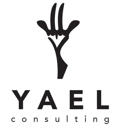 yaelconsulting.com | Agency Vista